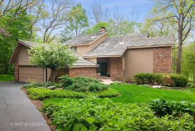 St. Charles Single Family Home New: 4n306 Knollcreek Drive