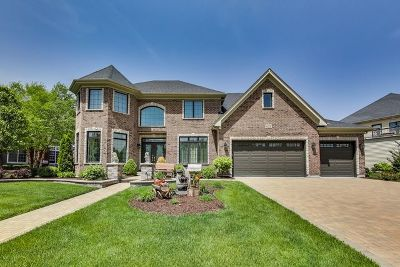 Naperville Single Family Home For Sale: 4008 Teak Circle