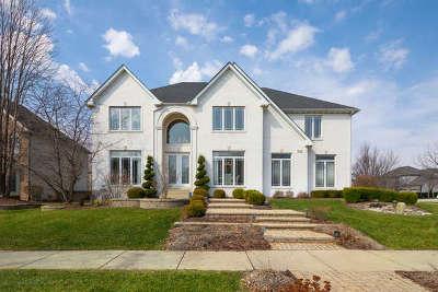 Naperville Single Family Home New: 3723 Nicanoa Lane