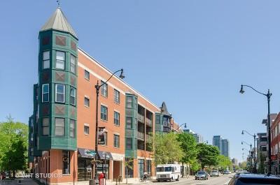 Condo/Townhouse New: 845 West Altgeld Street #3B