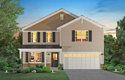 Plainfield Single Family Home New: 25321 West Ryan Lane