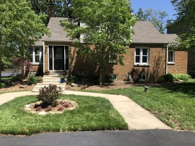 Kankakee Single Family Home For Sale: 3137 River Road