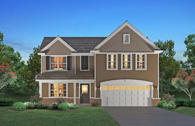 Plainfield Single Family Home New: 25434 West Ryan Lane