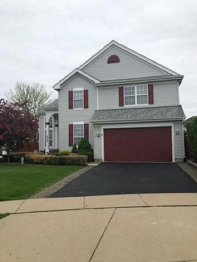 Carpentersville Single Family Home For Sale: 4309 Northgate Drive