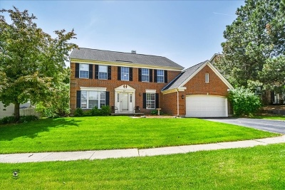 Bartlett IL Single Family Home New: $325,000