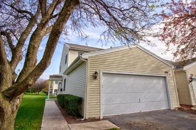 Naperville Rental New: 1650 Mulligan Drive