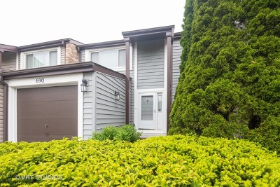 Wheeling Condo/Townhouse New: 690 Cedarwood Court #690