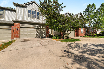 Streamwood Condo/Townhouse For Sale: 1497 Yellowstone Drive