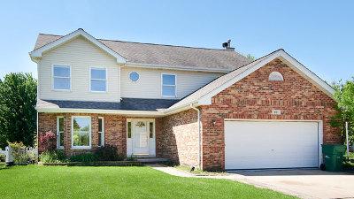 Romeoville Single Family Home For Sale: 801 Erie Drive