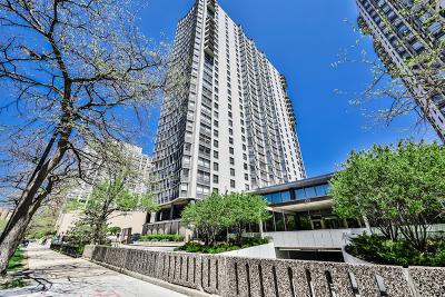 Chicago Condo/Townhouse New: 5701 North Sheridan Road #11F
