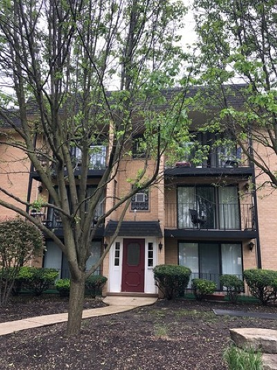 Elmhurst Condo/Townhouse For Sale: 1003 South Euclid Avenue #3W