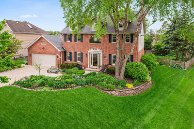Orland Park Single Family Home For Sale: 13720 Spring Lane