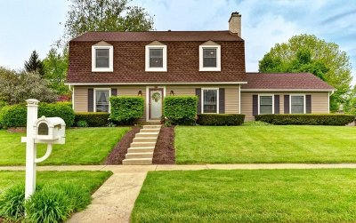 Naperville Single Family Home New: 213 North Birchwood Drive
