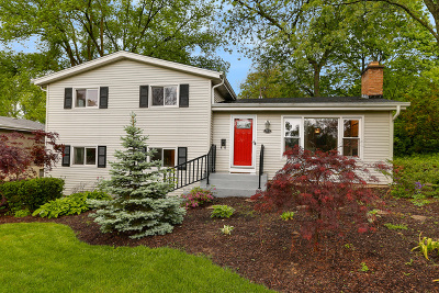 Single Family Home For Sale: 211 North Williston Street