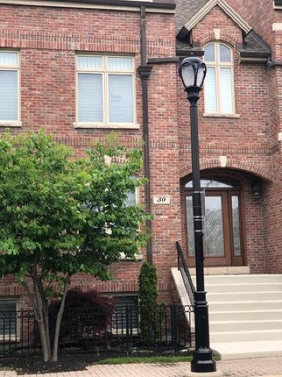 Palatine Condo/Townhouse New: 30 North Smith Street