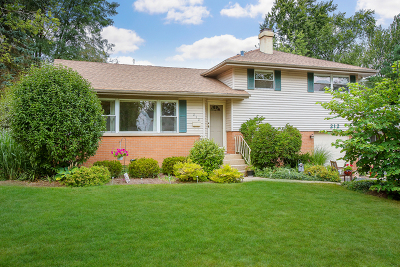 Wheaton Single Family Home For Sale: 212 Vernon Avenue