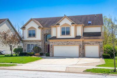Plainfield Single Family Home New: 22619 Fox Trail Lane