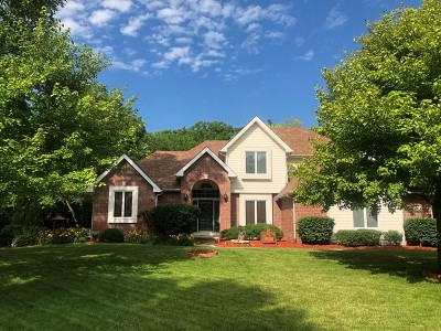 Joliet Single Family Home New: 22326 South Newcastle Court