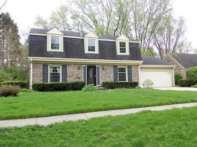 Palatine Single Family Home New: 552 South Echo Lane