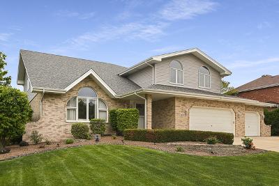 New Lenox, Joliet, Orland Park, Homer Glen, Lockport, Manhattan, Tinley Park, Frankfort, Mokena Single Family Home New: 14130 Scott Lane