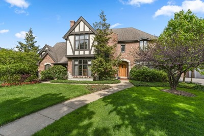 River Forest Single Family Home For Sale: 1331 William Street
