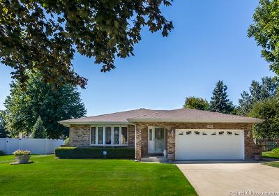 Joliet Single Family Home New: 1017 Kerry Lane