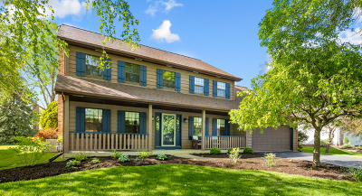 Naperville Single Family Home New: 876 Buttonwood Circle