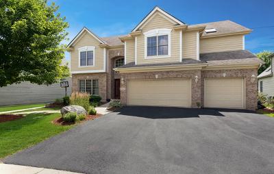 Naperville Rental New: 3837 Gladstone Drive