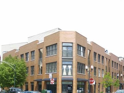 Condo/Townhouse For Sale: 2040 West Belle Plaine Avenue #207