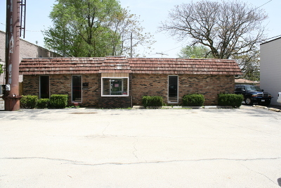Joliet Commercial For Sale: 100 South Larkin Avenue