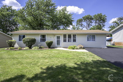 Mokena Single Family Home For Sale: 9518 Willow Lane