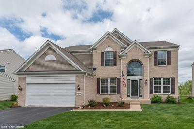 Carpentersville Single Family Home For Sale: 3526 Chancery Lane