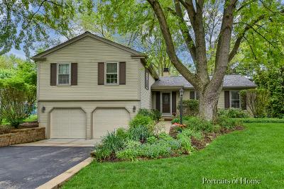 Batavia  Single Family Home For Sale: 1154 Chillem Drive