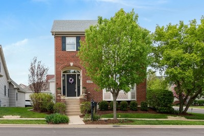 Geneva Single Family Home For Sale: 39w074 Armstrong Lane