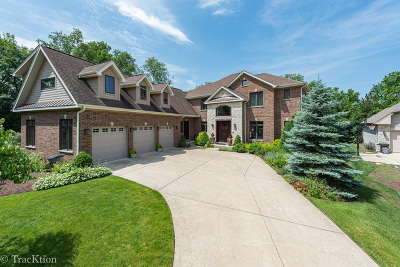 Downers Grove Single Family Home For Sale: 1441 Parrish Court