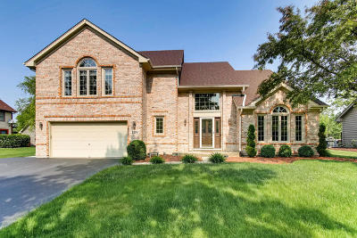 Bartlett Single Family Home For Sale: 1179 Ancient Oaks Drive