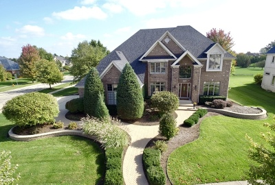 Naperville Single Family Home For Sale: 4704 Torphin Hill Court