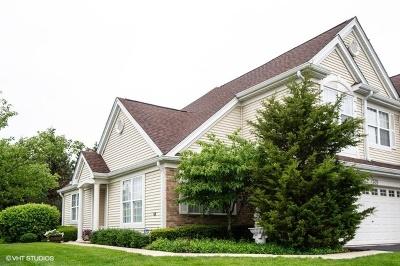 Bartlett Condo/Townhouse For Sale: 520 Telluride Court