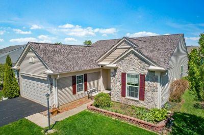 Del Webb Sun City Single Family Home For Sale: 11856 Borhart Drive