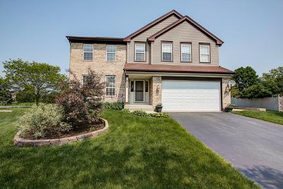 Carpentersville Single Family Home For Sale: 4408 Northgate Court