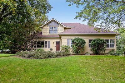 Warrenville Single Family Home For Sale: 28w530 Townline Road