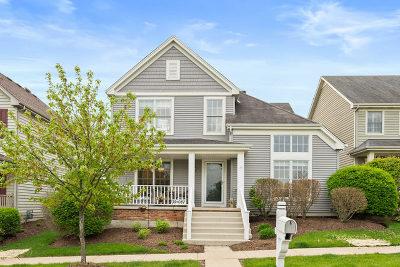 Geneva Single Family Home For Sale: 39w087 Herrington Boulevard