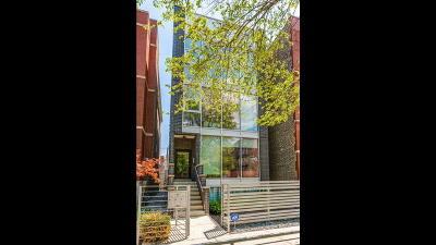 Condo/Townhouse For Sale: 1017 North Winchester Avenue #2