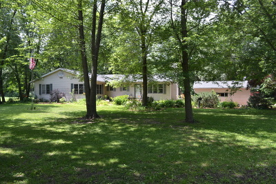 Wilmington Single Family Home For Sale: 31446 South Kavanaugh Road