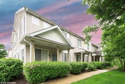 Romeoville Condo/Townhouse Price Change: 69 Coralbell Court