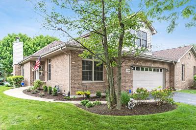 Palos Heights Condo/Townhouse For Sale: 6189 Princeton Lane