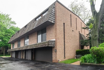 Barrington  Condo/Townhouse For Sale: 446 Lageschulte Street #1-446