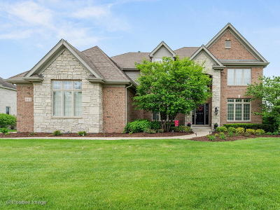 Batavia Single Family Home For Sale: 645 Lusted Lane