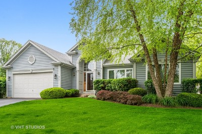 West Chicago  Single Family Home For Sale: 810 Dunham Drive