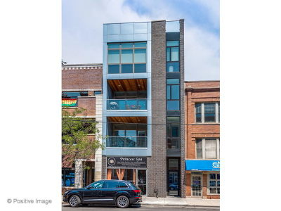Condo/Townhouse For Sale: 1338 West Belmont Avenue #3